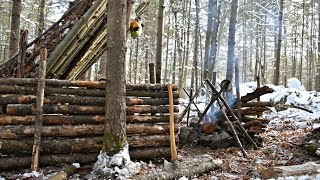 Solo Bushcraft Camp. 2 Nights in the Snow - Natural Shelter, Minimal Gear.