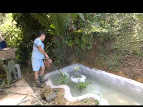 Como hacer un estanque facil y barato01 avi musica movil for Como hacer un lago en el jardin