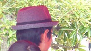 Tiny Hats in Japan!