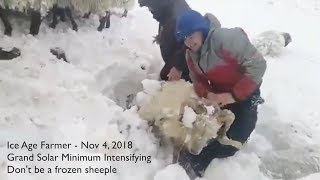 Winter is Coming - EARLY - Grand Solar Minimum (don't be a frozen sheeple, PREPARE!) - YouTube
