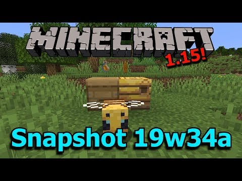 Minecraft bees @LiveShow Today | For Dummies