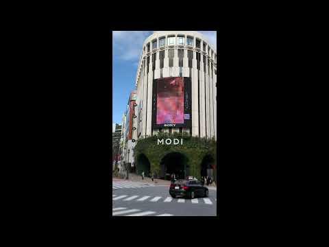SETA MODIビジョン「片道の夜行バス」MV