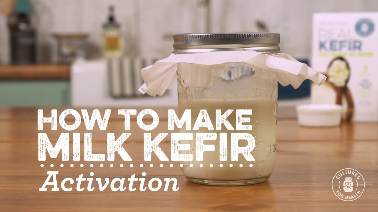 video Milk Kefir Grains | CulturesforHealth