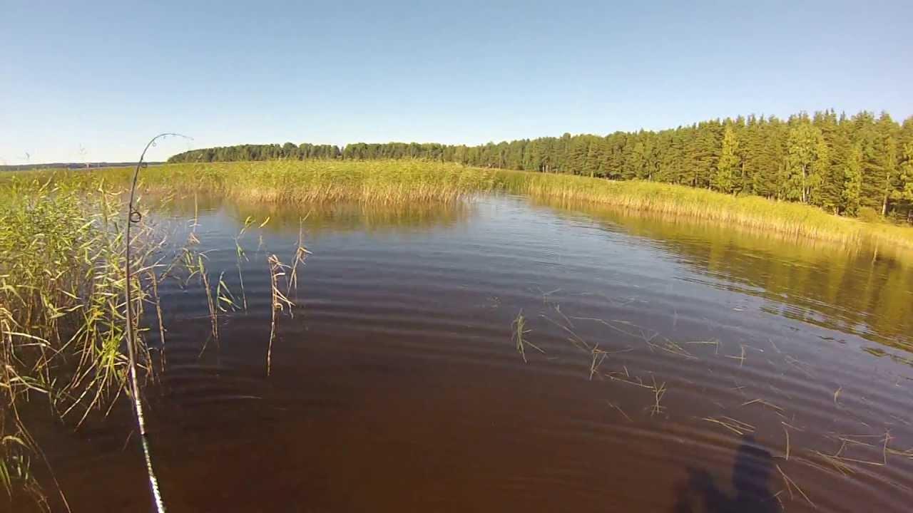 Рыбалка на пионерском озере