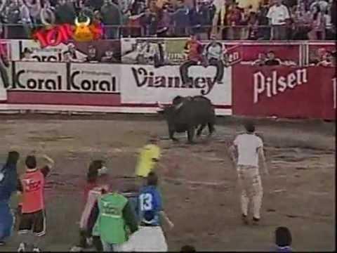 Toro Embravecido - Reiner Moreles.wmv