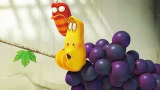 LARVA - GRAPE SWING | Cartoon Movie | Cartoons For Children | Larva Cartoon | LARVA Official