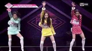 [Produce48] HOW Entertainment - Celeb Five - Celeb Five I Wanna be a Star