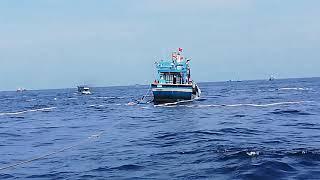 Lưới bao Bình Định,Đánh cá ở biển campuchia