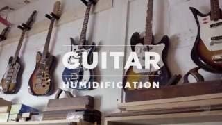 Watch the Trade Secrets Video, D'Addario Core: Guitar Humidification Tips