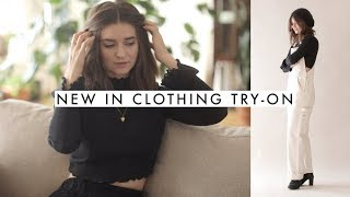 New In Try-on Haul   Everlane, Free People, Alo Yoga & more