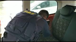 PRF prende traficante com 20 quilos de cocaína na BR-392, em Rio Grande