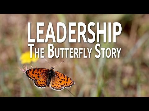 Leadership: The Butterfly Story