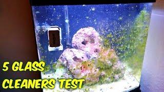 5 Aquarium Glass Cleaners Test