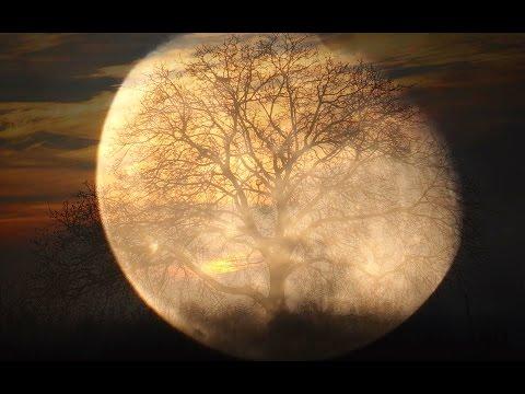 Ludwig van Beethoven - Moonlight Sonata