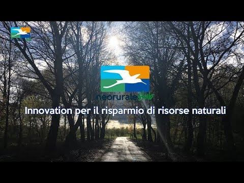 Ambiente - Video