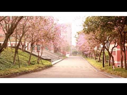 玄奘大傳 符瓊音-忘記我MV