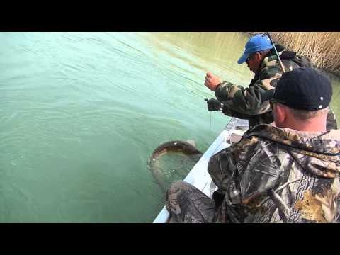 Рыбалка на Сома (смешной удочкой)