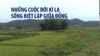 1 ÔNG 2 BÀ sống biệt lập trong bụi tre giữa cánh đồng Nghệ An