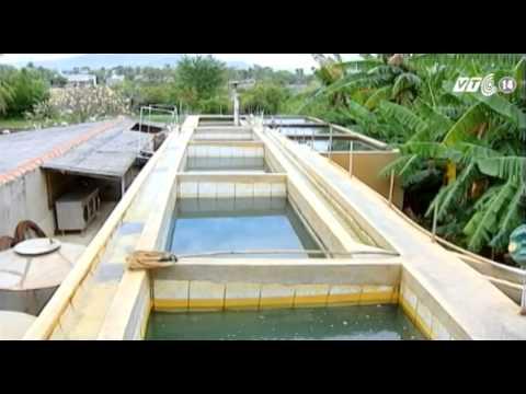 Baixar VTC14_Hà Nội thu thuế nước ngầm 6.000đ/m3
