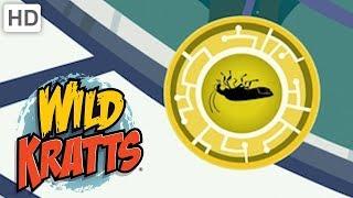 Wild Kratts - Best Season 1 Moments! (Part 7)   Kids Videos