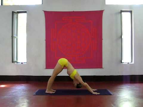 Repeat youtube video ASHTANGA YOGA    Kino Macgregor at PURPLE VALLEY yoga retreat Goa,India www.yogagoa.com