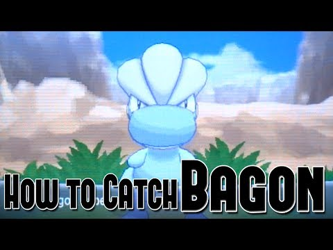Bagon Pokemon Omega Ruby And Alpha Sapphire How To Catch