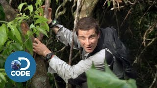 Bear Grylls in Borneo Jungle | Man vs Wild (1/6)