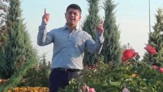 Ali Kırış - Güller Açıyor Allah Dedikçe