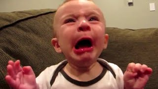Babies Eating Lemons for the First Time Compilation (2014)