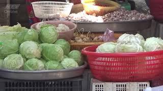 THƯƠNG TRƯỜNG MUÔN MẶT | Nông sản Trung Quốc đội lốt hàng Việt | TTMM | HTV Web