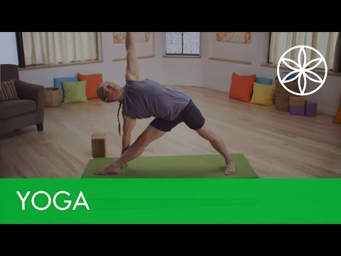 rodney yee's complete yoga for beginners offers a