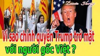 Vì sao chính quyền Trump trở mặt với người gốc Việt ?