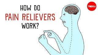 How Do Pain Relievers Work? - George Zaidan