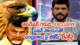 Operation Garuda: Is BJP out to 'finish' Chandrababu chapt..