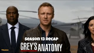 Grey's Anatomy Season 13 Recap