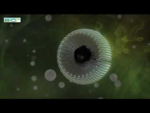 eco+ oil dispersant  - YouTube