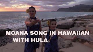 MOANA Song in Hawaiian HULA WITH LYRICS