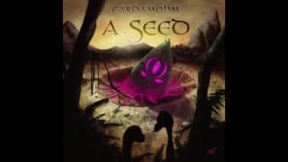 Cardamohm - Cardamohm - A Seed