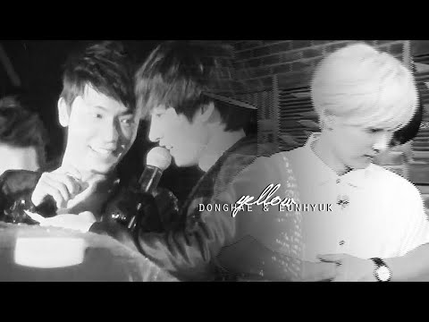 EunHae | Look how they shine for you.