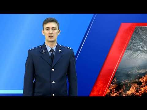 О ситуации с лесными пожарами в Приморском крае