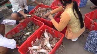Chợ Ba Hòn -Kiên Lương, Hải sản tươi sống cực ngon(market in viet nam)