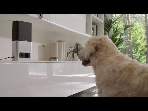 Petcube bites: Treat and monitor your pets from anywhere with the most advanced pet camera. Fling treats, play fetch, stream 1080p HD video, and enjoy real-time chat with two-way audio.