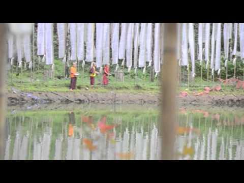 Revival of Doling lake, Rabongla, Sikkim