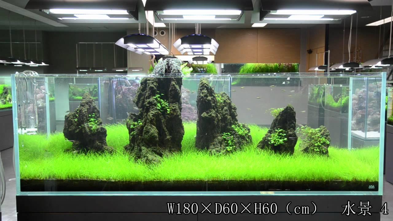 Braceless Vs Brace Aquarium Tank