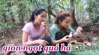 Ăn Củ Hủ Dừa Đúng Cách, Ngon Ngọt Nhất - Em Gái Quê - Bến Tre