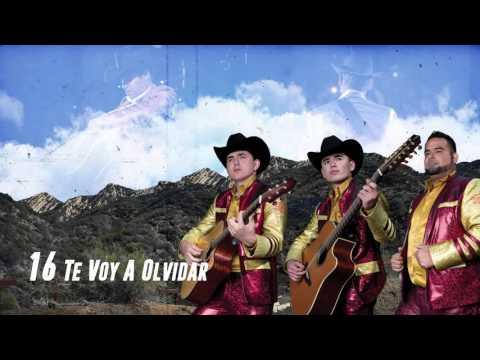 Te Voy A Olvidar - Los Plebes del Rancho de Ariel Camacho - DEL Records 2016