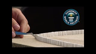 "Most mini dominoes toppled - ""Officially Amazing"" - VideoStudio"