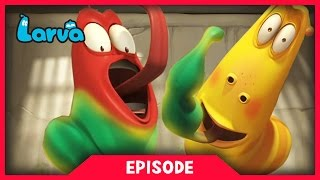 LARVA - SUPER STRENGTH | 2017 Cartoon Movie | Videos For Kids | 라바 | LARVA Official