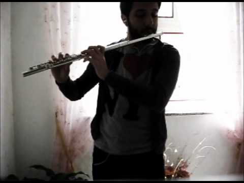Lord Of The Ring  The Fellowship of the Ring ''Concerning Hobbits'' ( Flute Cover)