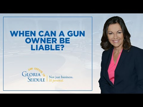 When can a gun owner be liable?